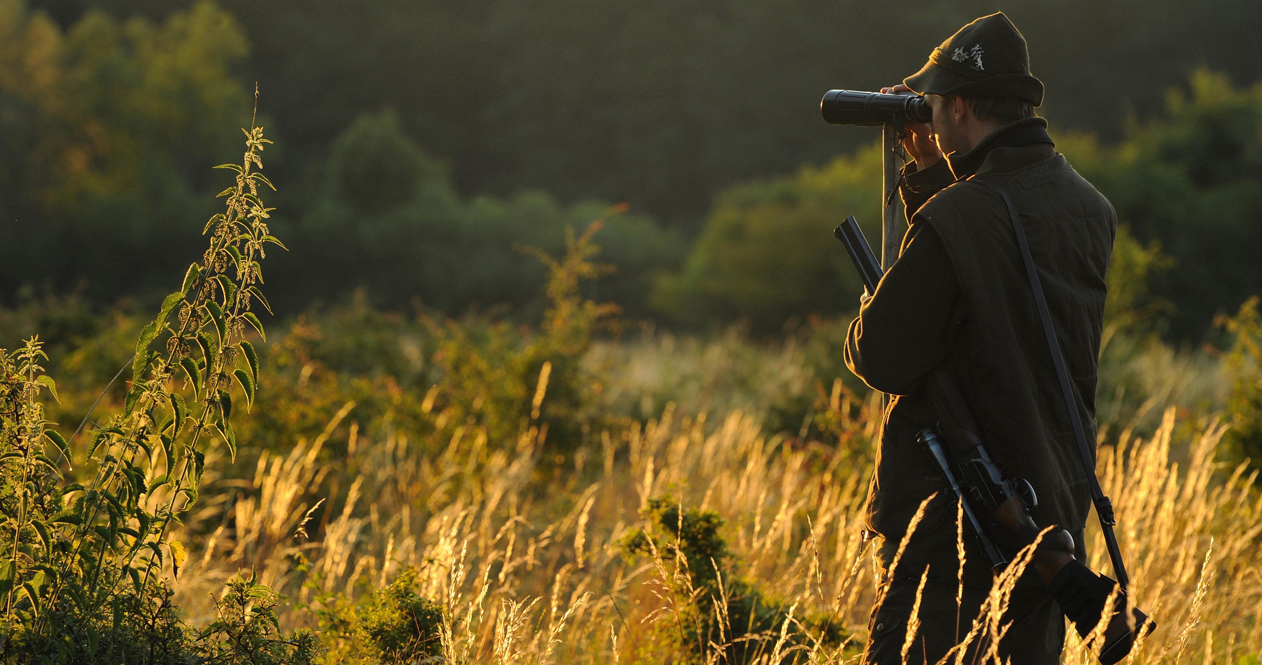 Stand und Entwicklung Corona und Jagd - Niederösterreichischer Landesjagdverband