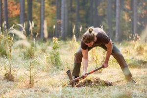 Jäger setzt Pflanzen