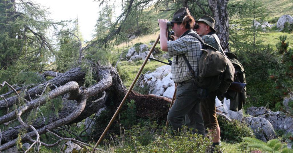 Zwei Jäger auf der Pirsch